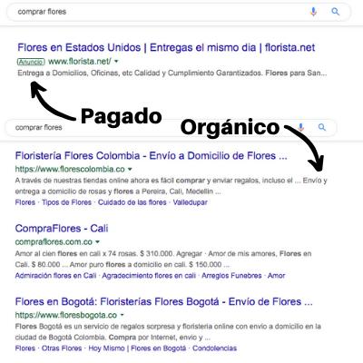 Tutorial SEO: tipos de resultados de búsqueda